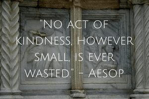 No act of kindness however small is ever wasted-Aesop